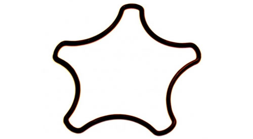 p-12360-RZ-STAR-SEAL-UD-(2)-463x404